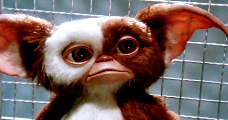 A IMAGE OF A GREMLIN